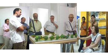 Proyectar una forma de vida cohousing: del programa inicial al edificio construido en el Centro Trabensol