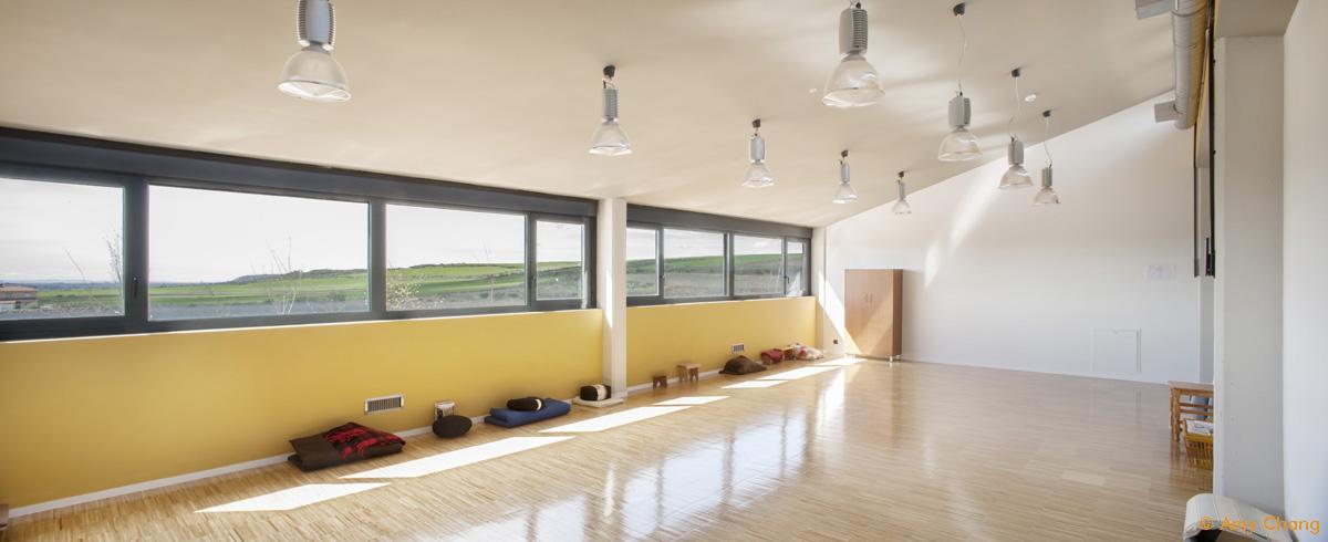 Arquitectura cohousing - Sala Actividad Valle del Jarama Trabensol
