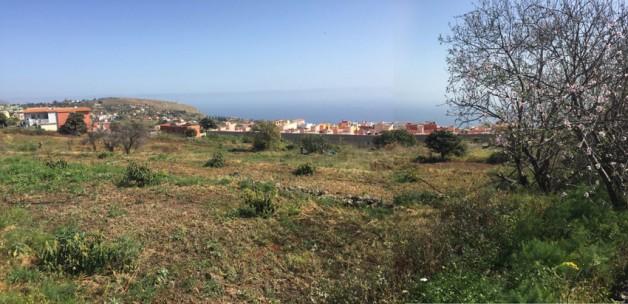 Cohousing Inclusivo Brisas Canarias. Vivienda Colaborativa para todos